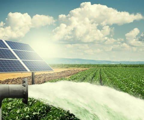 shakti_solar_pump-480x400